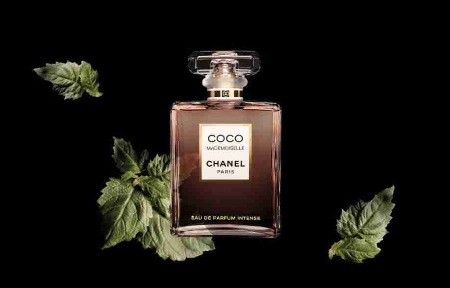 New Perfume Review Chanel Coco Mademoiselle Intense A Warm Hug From
